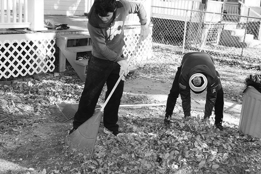 Sophomore Erick Hernandez and Freshman Jaheem Ray pick up leaves during the first annual team work day Nov. 18.