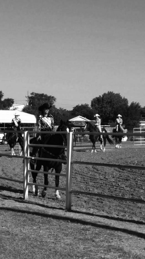 Southern competes in the Horsemanship event at the 4-H Grounds in Dodge City, KS. She represented the Newton Saddle Club as their Rodeo Queen during 2015-16.