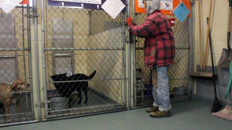 Newton Animal Shelter