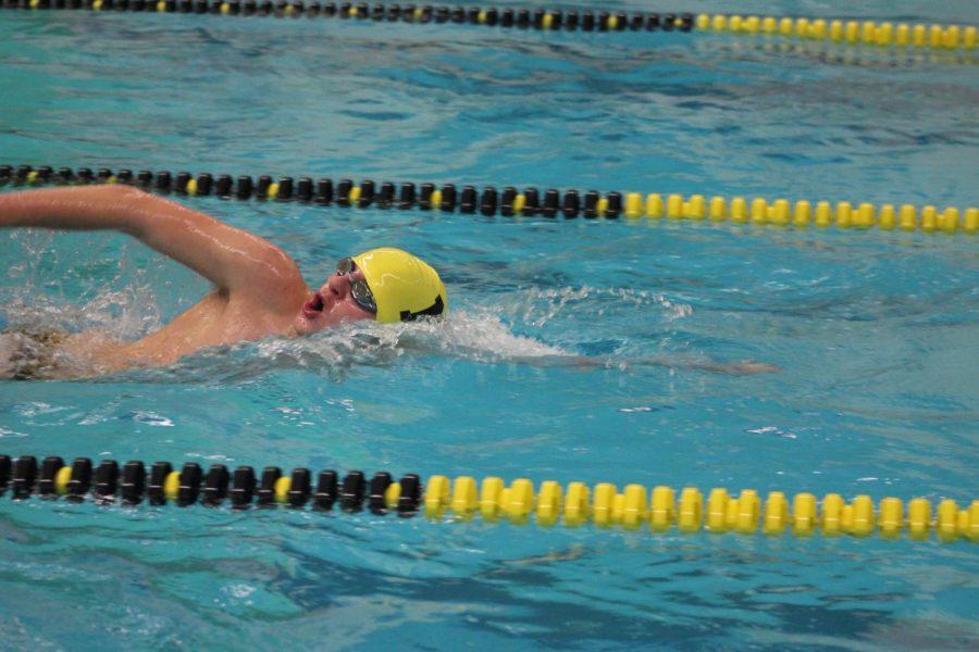 Boys_Swimming_Nov_30_Kate_Szambecki_26