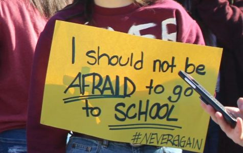 Chanting along Junior Emma Ellis rallies with the students while they show respect to those who have lost their lives in the school shootings. The student led rally were started by the students in Parkland, FL so they would be able to share their story across the states.