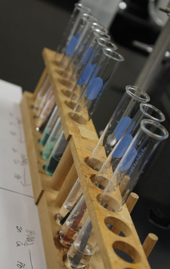Students in Honors Chemistry II leave various types of metals in three different types of solutions to observe the reactions that occur. The metals used were Zinc, Copper and Lead.