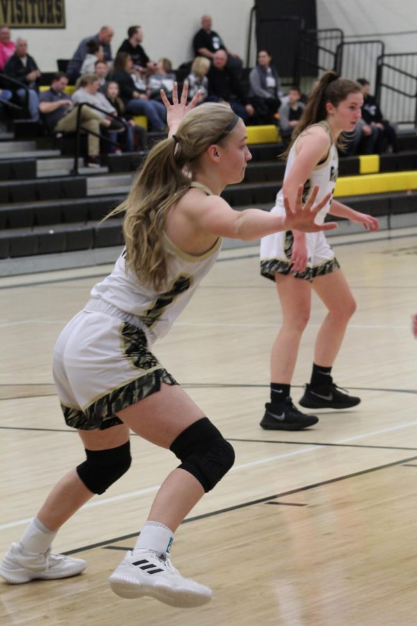 Sophomore Lindsey Antonowich guards her opponent.
