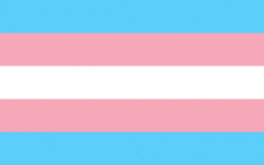 Reflecting on Transgender Awareness Week