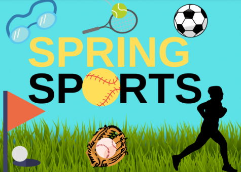 Spring sports in full swing
