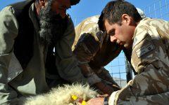 Tensions rise in Afghanistan